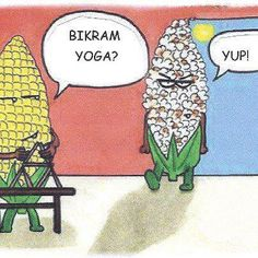 This is why I can& do hot yoga - I already sweat so much with Vinyasa that it would totally pop my kernels! This is why I cant do hot yoga - I already sweat so much with Vinyasa that it would totally pop my kernels! Vinyasa Yoga, Bikram Yoga, My Yoga, Kundalini Yoga, Yoga Jokes, Yoga Humor, Chile, Yoga Handstand, Yoga Flow