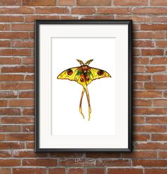 Watercolor Moth Art Print, printable illustration, Instant download