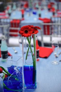 Our center pieces with red gerber's. Provided by Geranium Lake Flowers in Portland, Oregon. Baby Blue and Red was the theme.
