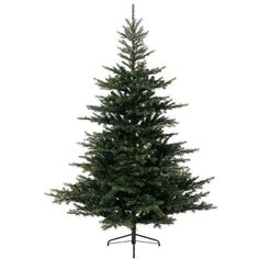 Kaemingk Grandis Fir Christmas Tree (210cm) ($340) ❤ liked on Polyvore featuring home, home decor and holiday decorations
