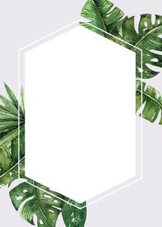 Frame for text or photo. Flower Backgrounds, Wallpaper Backgrounds, Iphone Wallpaper, Freetime Activities, Fond Design, Story Instagram, Instagram Highlight Icons, Flower Frame, Cute Wallpapers
