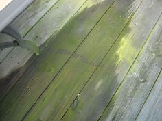 Ecofriendly deck cleaning