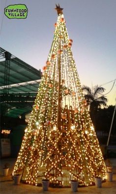 Come and Watch this beautiful Christmas Tree at Fun 'N' Food Village Nagpur Amusement & Water Park​