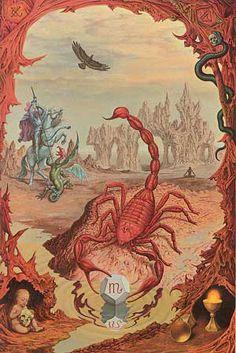#scorpio #astrology #zodiac #scorpion