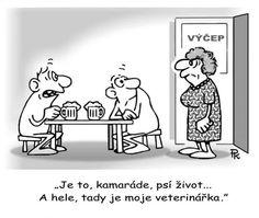 Pavlova, Humor, Peanuts Comics, Jokes, Awkward, Cartoons, Cartoon, Husky Jokes, Humour