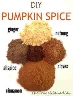 DIY Homemade Pumpkin Spice Recipe Making your own Pumpkin Spice is really simple and only takes 5 ingredients. I find it is much tastier then the store bought pre-mixed pumpkin spice and you can sa… recipes Homemade Pumpkin Pie, Homemade Spices, Homemade Seasonings, Pumpkin Pie Spice, Pumpkin Recipes, Fall Recipes, Diy Pumpkin, Spice Blends, Spice Mixes
