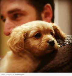 """Me and Bailey. I LOVE HIM SO MUCH I WANT TO EXPLODE."" Now this makes my heart explode of awwness! - goaww.com"