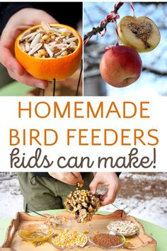 Feed the birds in winter with four clever homemade bird feeders that kids can make. Mindful Activities For Kids, Nature Activities, Spring Activities, Fun Activities For Kids, Infant Activities, Preschool Crafts, Family Activities, Preschool Activities, Outdoor Activities