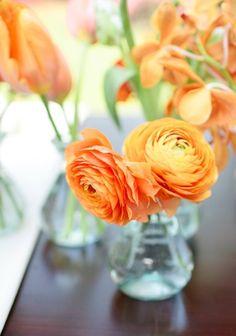 A mint and orange color scheme--fun and beautiful ideas