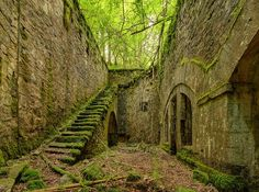 Ruins of an old, abandoned fort in France. In my minds eye, I see scared soldiers working in the heat of battle to stay alive. A fascinating tribute!