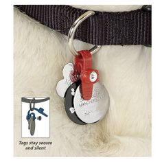 Would be good, putting 4 extra tags on collar with medication she needs daily.  Any extra help besides microchip to help my  dog. Freeze Tag® Dog Tag Holder - Dog Beds, Gates, Crates, Collars, Toys, Dog Clothing & Gifts