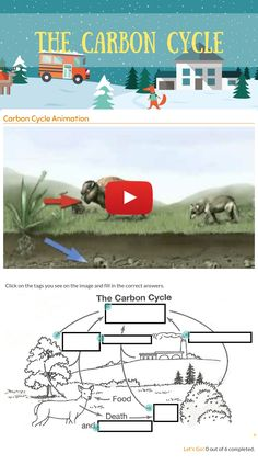 """Me blended worksheet """"The Carbon Cycle"""". Biology Classroom, Biology Teacher, Ap Biology, Teaching Biology, Blends Worksheets, Science Worksheets, Science Lessons, Science Experiments, Sustainability Education"""
