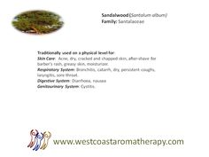 Sandalwood EO Traditional Physical Uses West Coast Aromatherapy - Google+