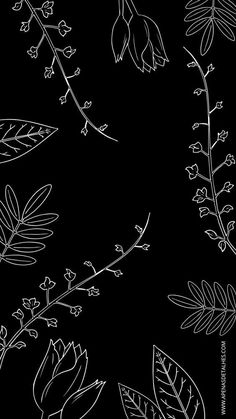 45+ Free Black Aesthetic Wallpaper Options For iPhone  