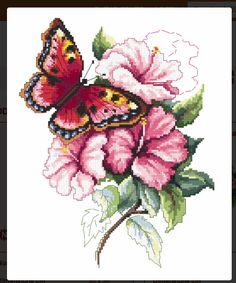 Farfalla e fiori rosa
