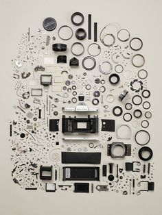 Todd McLellan - Disassembled Pentax Camera - This would look really cool glued upright inside a box frame in an office. - MCM