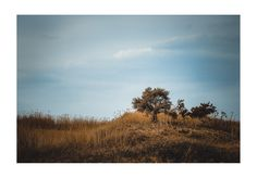 #landscape #art #photography #fotograf http://www.cotearazvan.ro/ https://www.facebook.com/cotearazvanfotograf https://www.facebook.com/fotonuntabucuresti/ http://fotografnunta.info/