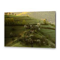 Primăvara e minunată, sus pe deal. Photoshop, Painting, Art, Art Background, Painting Art, Kunst, Paintings, Performing Arts, Painted Canvas