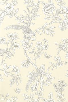 Soraya #wallpaper in #pearl from the Shangri-La collection. #Thibaut