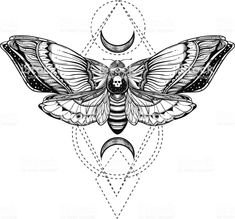 black and white deadhead butterfly doodle illustration - black and white deadhead butterfly on sacred geometry vector illustration – Royalty-free Moth sto - Diy Tattoo, Sternum Tattoo, Death Moth Tattoo, Lunar Moth Tattoo, Black White Tattoos, Black And White Drawing, Moth Tattoo Design, Vintage Tattoo Design, Traditional Moth Tattoo