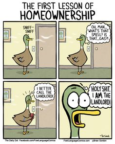 Funny Home Ownership comic Funny Duck, The Funny, Fowl Language Comics, Motherhood Funny, Words With Friends, Funny Messages, Text Messages, Parenting Humor, Foster Parenting