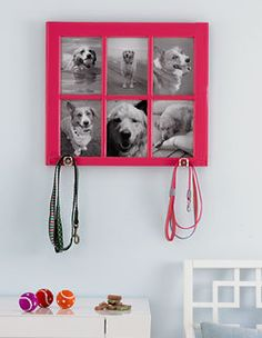 Easy DIY picture frame project! Could add a basket on the front in between the hooks for balls and tug of war toys