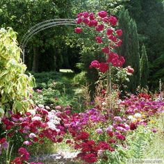 garden decorations, arches for yard landscaping and garden design