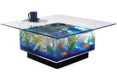 Fish Tank Coffee Table.....This is easily one of the most bad ass coffee tables ever made. It looks incredible and turns an otherwise boring room into a vibrant, colorful and intersting place to be