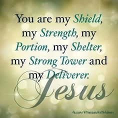 You are my shield, my strength, my portion, my shelter, my strong tower and my deliverer. JESUS. <- love this. Share items about your faith with me... no matter your religion.