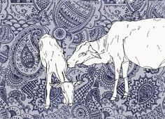 indian paisley cows - Rose Nisbet