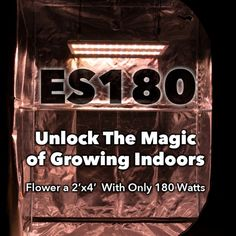De 10+ beste bildene for Electrick sky grow led | lights