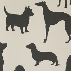 Bring quirky prints to any room in the home with this Best in Show wallpaper from Osborne & Little. The non-flocked rendering of the best-selling wallpaper, features fun silhouettes of famous dog b...