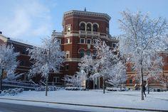Oregon State University, Corvallis, Oregon (Go Beavers!)