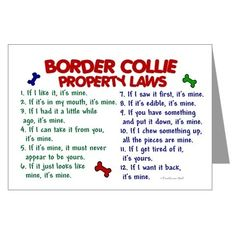 Border Collie Rules