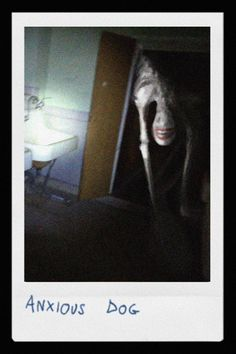 Art by Trevor Henderson. Scary Photos, Creepy Images, Creepy Pictures, Spooky Scary, Creepy Art, Arte Horror, Horror Art, Images Terrifiantes, Creepy Horror
