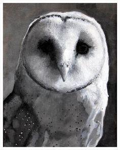 Owl++Black+and+White+Art+Print+by+TheHauntedHollowTree+on+Etsy,