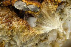 Natrolemoynite, Na4Zr2Si10O26•9H2O, Poudrette Quarry, Mont Saint-Hilaire, La Vallée-du-Richelieu RCM, Montérégie, Québec, Canada. Fov 4mm