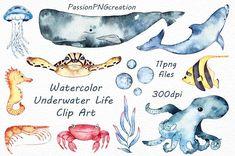Watercolor sea life clipart ocean clip art PNG transparent