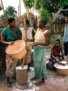 "Cassava flour being pounded in a mortar, after which it is sifted before being put in hot water to make cassava bread or ""fufu"" or ""luku"" in Kikongo. Date	1988"