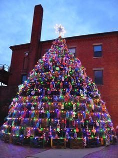 Gloucester, MA This Is a Thing? Lobster Trap Christmas Trees Are Serious Business in New England Christmas In America, Christmas And New Year, Christmas Time, Christmas Ideas, Merry Christmas, Front Yard Decor, Tree Story, Lobster Trap, Collaborative Art Projects