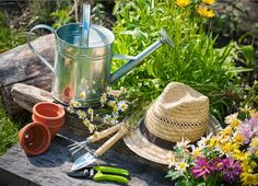 The Green Thumb: Four Easy Ways To Get More From Your Home Garden. If you're looking to get more from your home garden, here are four easy ways to improve a green thumb. Growing a home garden creates beauty, oxygen and even food for our fam.