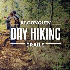 The expansive landscape of Algonquin Park offers plenty of opportunities for all kinds of adventures. One of the most popular ways to explore the diverse t Hiking Tips, Camping And Hiking, Camping Hacks, Backpacking Tips, Camping Stuff, Camping Ideas, Quebec, Vancouver, Ontario Travel