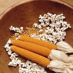 Grow Your Own Popcorn Corn Plants