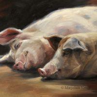 'Slapende varkens', 24x18 cm, olieverf schilderij (verkocht)