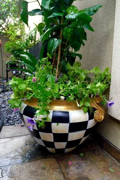 Zoey Urn Gardening Pinterest Fiberglass Planters
