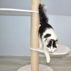 Scandinvian Design Basic Cat Tree in White – Cat's Cozy Space Liming Wax, Sisal Rope, White Chalk Paint, White Cats, Cat Tree, Pet Store, Scandinavian Design, Solid Wood, Cozy