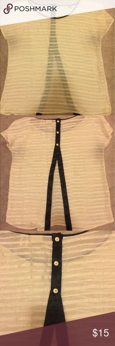 Daytrip sheer shirt. Daytrip sheer cream shirt.  Black trim with three buttons on back, open with black trim. Size xlarge Tops Blouses