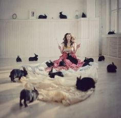 Crazy Rabbit Lady