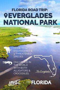Florida Girl, Visit Florida, Florida Vacation, Florida Travel, Florida Keys, Wonderful Places, Beautiful Places, Florida Adventures, Everglades National Park