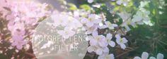 Colored Lens Filter könnt ihr nutzen, um euren Bildern einen interessanten Look zu verleihen - und das ganz ohne Photoshop. Wir zeigen euch in unserem DIY wie.